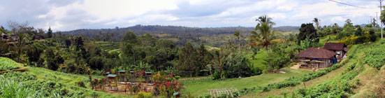 Bali view from hill side